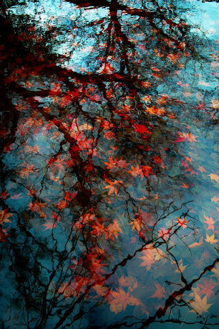 loving autumn #thingsdeeloves 2