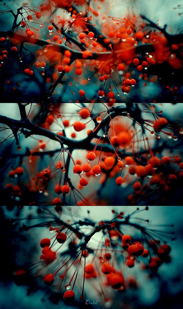 loving autumn #thingsdeeloves 4